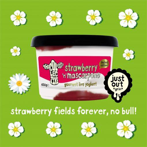 strawberry and mascarpone limited edition yoghurt
